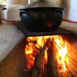 Como realizar as refeições vegetarianas e sugestões para o cardápio – por Karina C. Deana