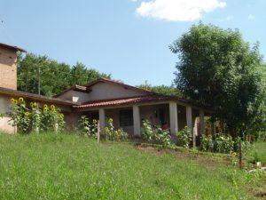 Nossa primeira casa no campo: Terra de Beulá – por Karina C. Deana