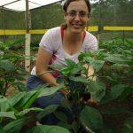 Lições práticas da horta – Missionários em terras distantes