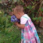 Parte 2: Como alimentar bem a família fora de casa – a saga continua! – por Karina C. Deana