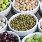 6 opções vegetais para substituir a proteína animal