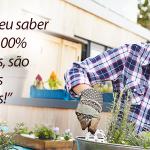 Quais os benefícios de se plantar o próprio alimento?