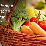 Escolha alimentos orgânicos e viva mais